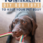 49 Simple, Interactive DIY Dog Toys To Keep Your Pet Busy - pin