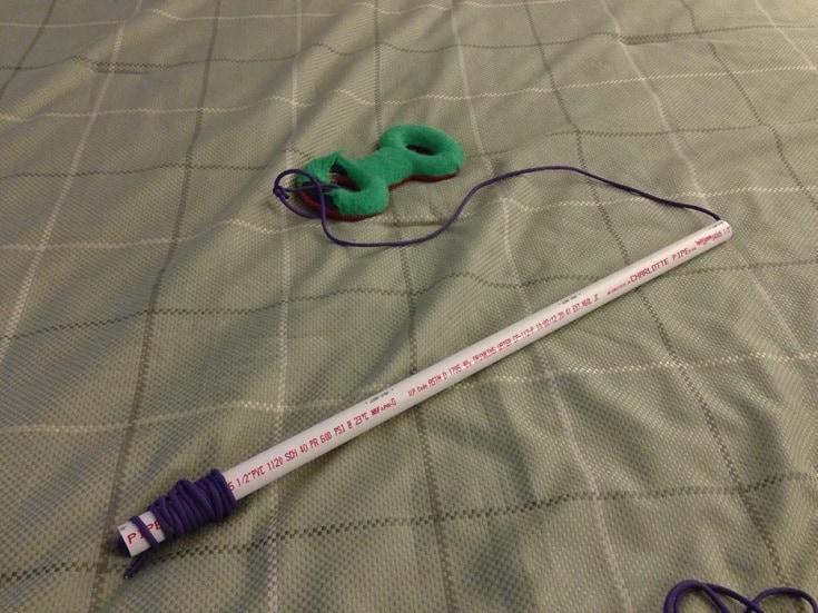 """$2 Dog Toy """"Fishing Pole"""""""