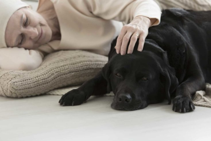 Animal assisted therapy reducing stress in elderly woman with cancer sleeping with dog on carpet
