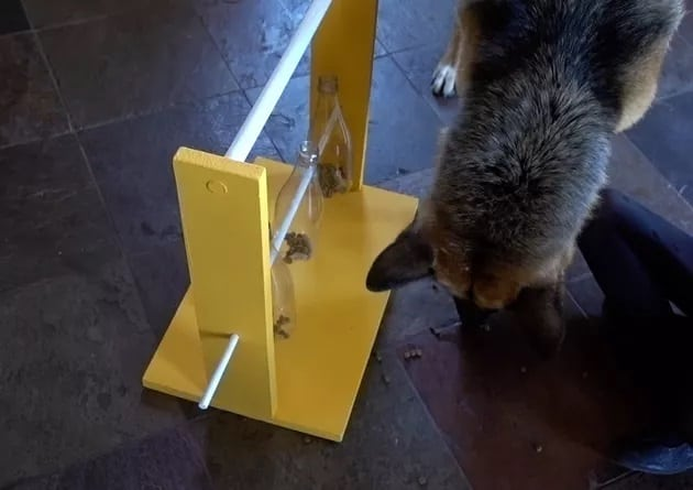 Spinning Bottle Puzzle Feeder For Dogs