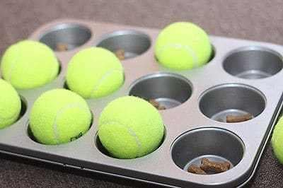 Tennis Ball Puzzle Toy