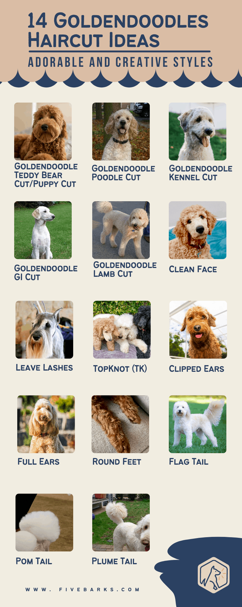 14 Goldendoodles Haircut Ideas - Adorable and Creative Styles -Infographic