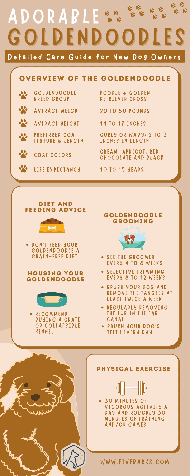 Adorable Goldendoodles: Detailed Care Guide for New Dog Owners - Infographic