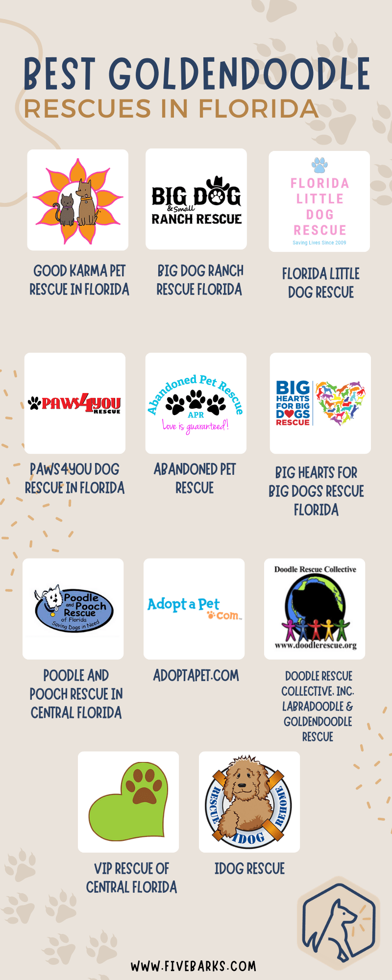 Best Goldendoodle Rescues in Florida - Infographic