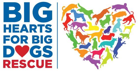 Big Hearts For Big Dogs Rescue Florida logo