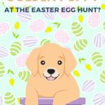 Can You Find the Golden Puppy at the Easter Egg Hunt? - pin