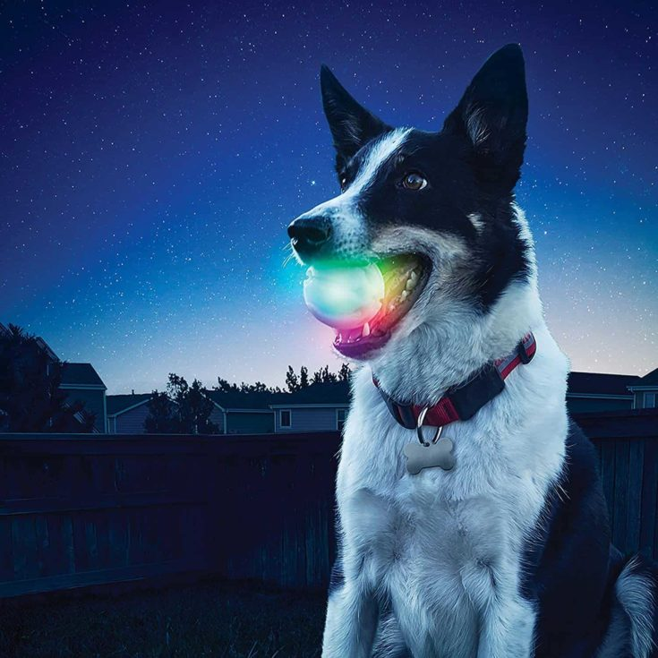 Nite Ize GlowStreak LED Dog Ball, Bounce-Activated Light Up Dog Ball