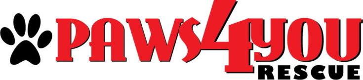 PAWS4you Dog Rescue in Florida logo
