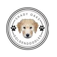 Shady Oaks Goldendoodles logo
