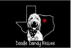Doodle Dandy Rescue logo