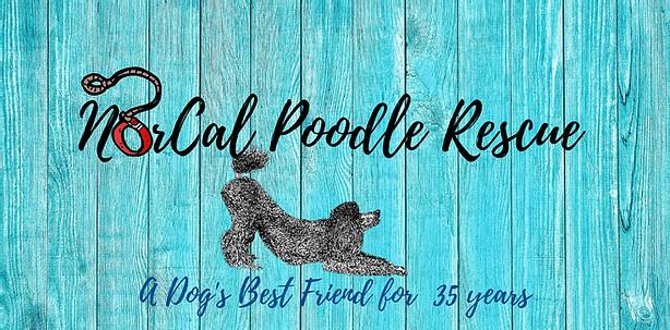 NorCal Poodle Rescue logo