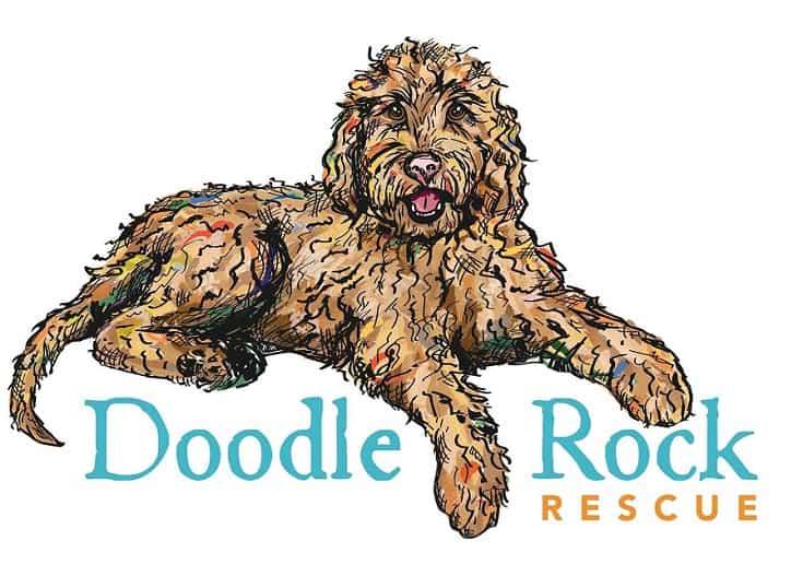 Doodle Rock Rescue logo