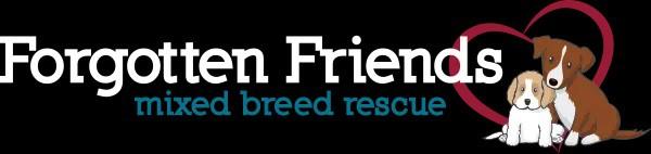 Forgotten Friends Texas logo