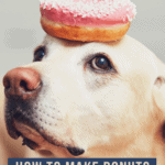 How To Make Donuts For Your Dog - pin