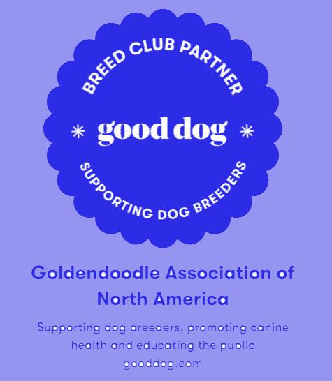 Goldendoodle Association of North America Blue Ribbon