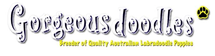 Gorgeous Doodles logo
