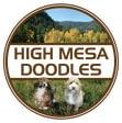 High Mesa Doodles logo