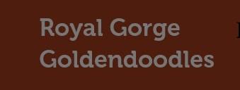 Royal George Goldendoodles logo