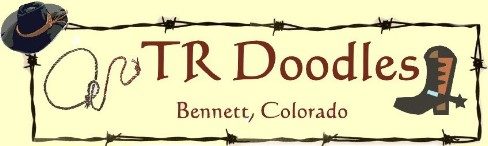 TR Doodles logo