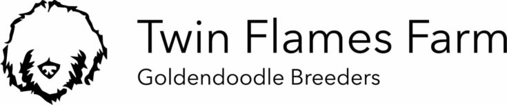 Twin Flames Farm Goldendoodle logo