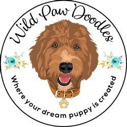 Wild Paw Doodles IA logo