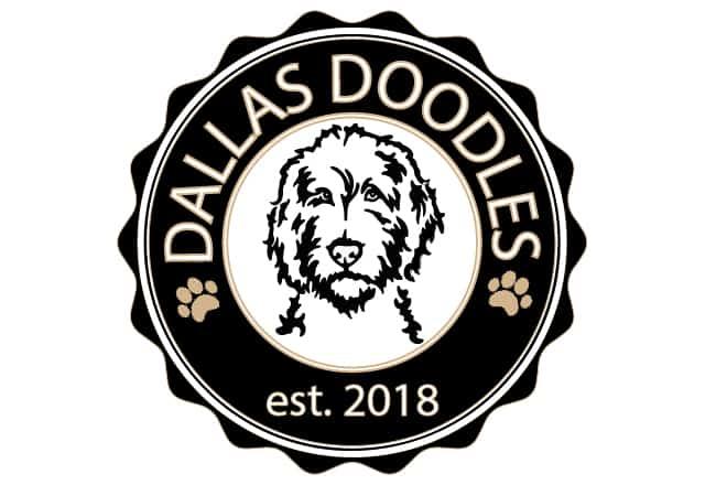 Dallas Doodles logo