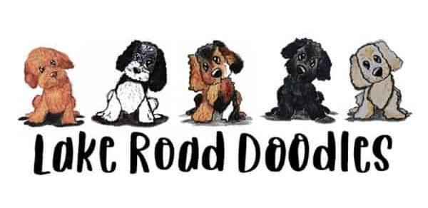 Lake Road Goldendoodle logo