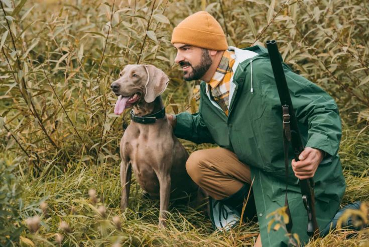 Handsome man squatting in bushes with a dog and gun at hunt