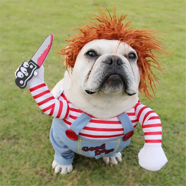 Halloween Dog Costumes Funny Pet Clothes