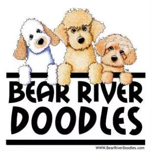 Bear River Doodles In Pennsylvania logo