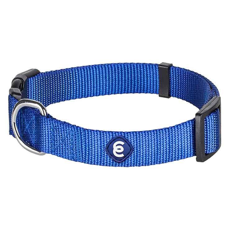 Blueberry Pet Essentials 20+ Colors Classic Nylon Adjustable Dog Collars