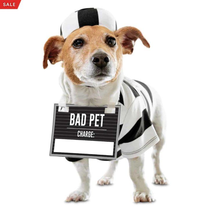 Bootique Crooked Cutie Prisoner Pet Costume, XX-Small