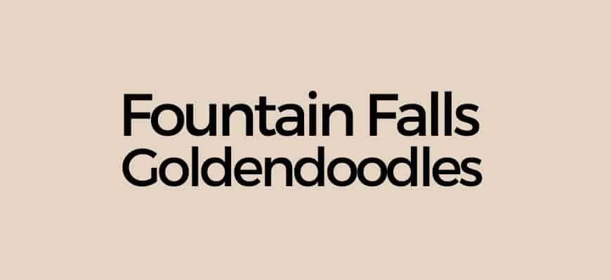 Fountain Falls Goldendoodles Logo