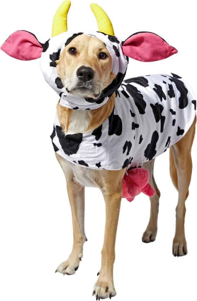 Frisco Happy Cow Dog & Cat Costume
