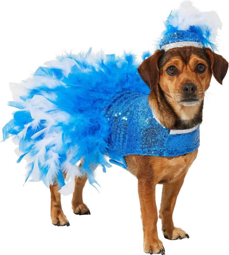 Frisco Showgirl Dog & Cat Costume