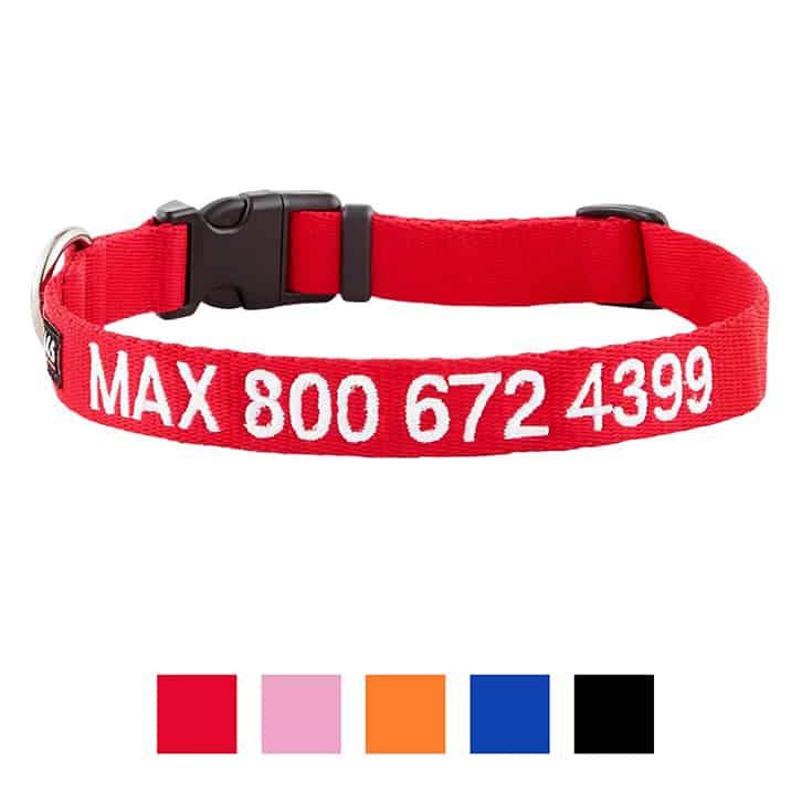 GoTags Nylon Personalized Dog Collar