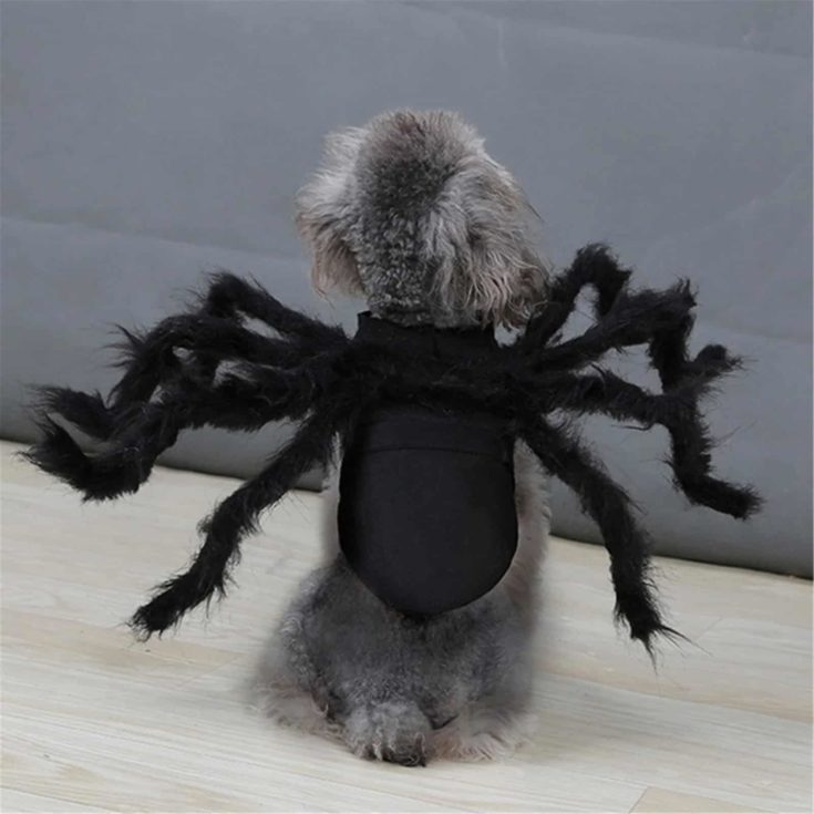 Halloween Simulation Plush Spider Costumes