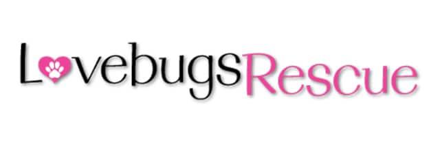 Lovebugs Rescue Logo