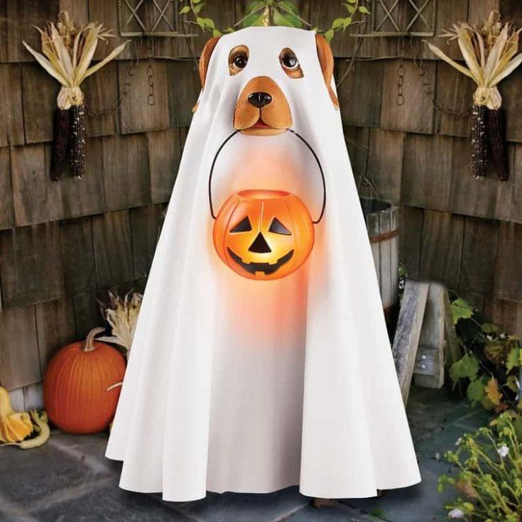 Marni Lighted Ghost Dog In Halloween Costume Figurine