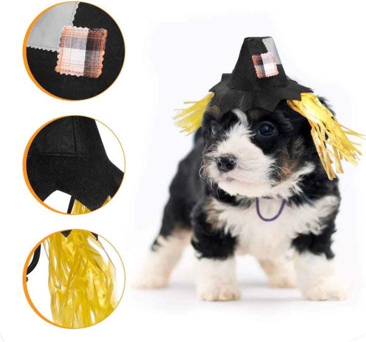 POPETPOP Scarecrow Dog Costume-Scarecrow