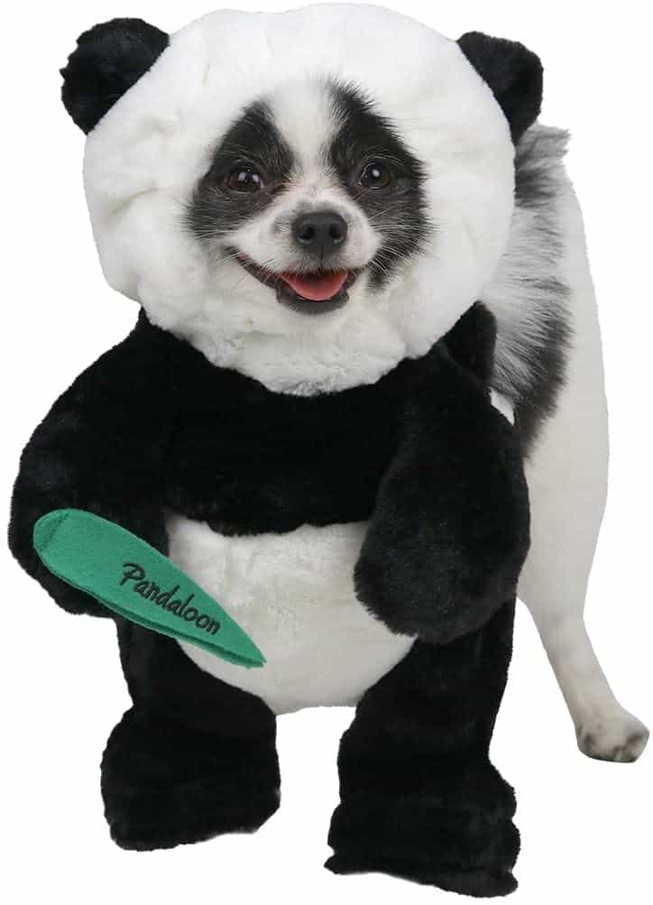 Pandaloon Panda Puppy Dog Pet Costume