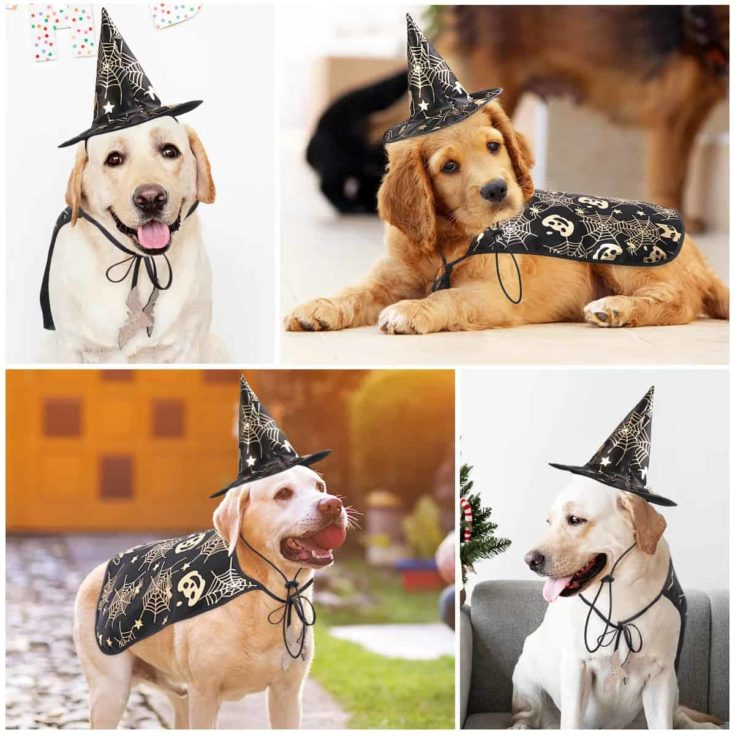 Pet Halloween Costume Cape And Wizard Hat