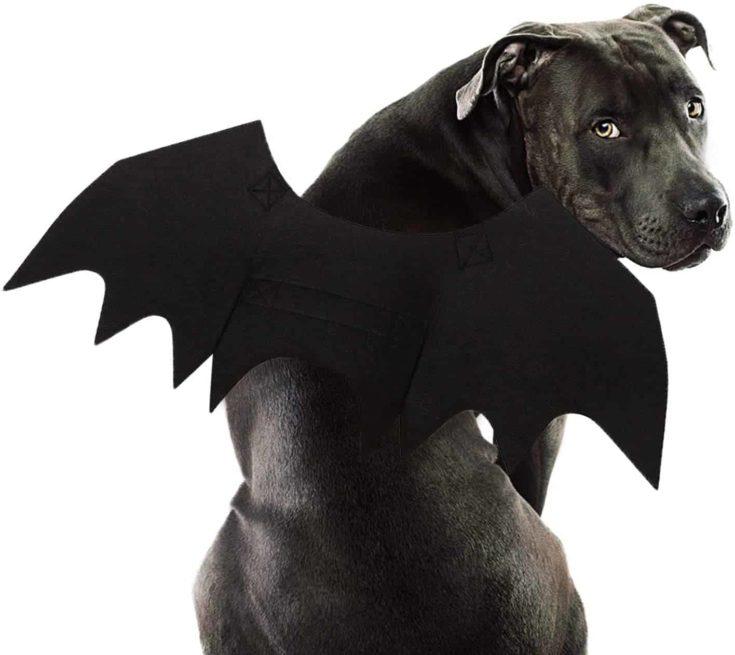 Rypet Dog Bat Costume