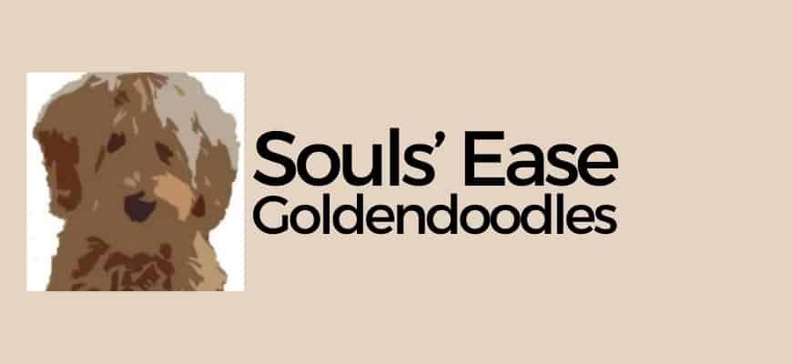 SOULS' EASE GOLDENDOODLES Logo