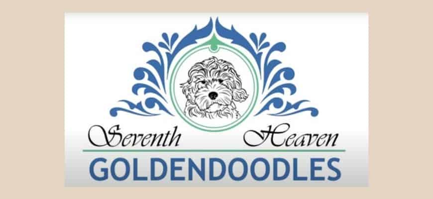 Seventh Heaven Goldendoodles Logo