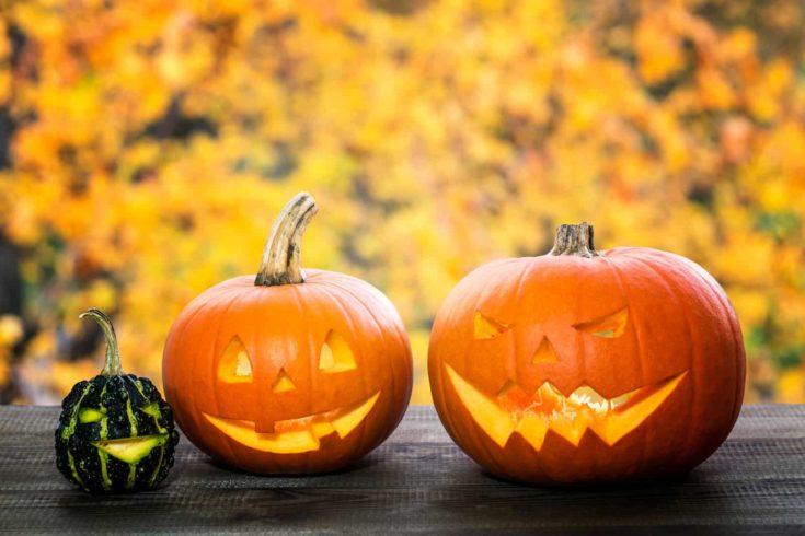 halloween jack-o-lantern pumpkins in autumn scenery
